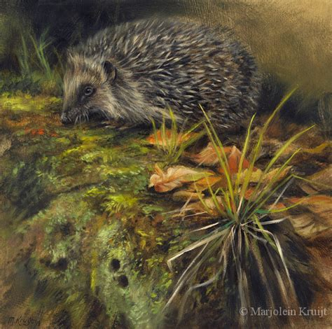 Wildlife kunst, dieren schilderijen door Marjolein Kruijt