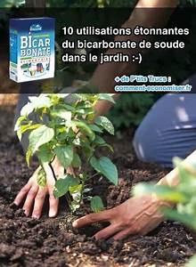 Ph Bicarbonate De Soude : 10 utilisations tonnantes du bicarbonate de soude dans le ~ Dailycaller-alerts.com Idées de Décoration