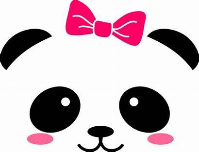 Face Panda Kawaii Animal Cara Bow Vinyl