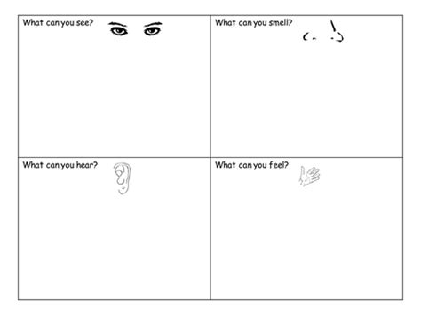 senses worksheet by claireh1039 teaching resources