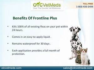 frontline plus for dogs 45 88 pounds