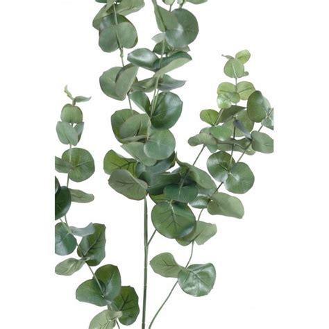de cuisine quigg déco mur vegetal pas cher bordeaux 21 mur vegetal 3d