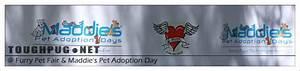 Furry Pet Fair & Maddie's Pet Adoption Day | TOUGHPUG.NET