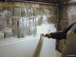 Comment Se Débarrasser Des Souris Dans Les Murs : le cuvelage la solution pour supprimer l humidit dans ~ Melissatoandfro.com Idées de Décoration