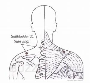 Acupressure Points to Induce Labor | Baby head ...