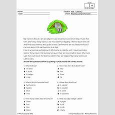 Reading Comprehension  I Am A Badger Primaryleapcouk