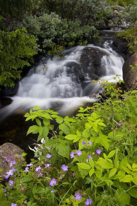 pin  jasmin  pics beautiful waterfalls natural
