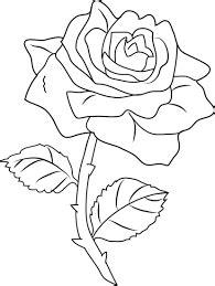 Image result for rose line drawing | Designs de bordados