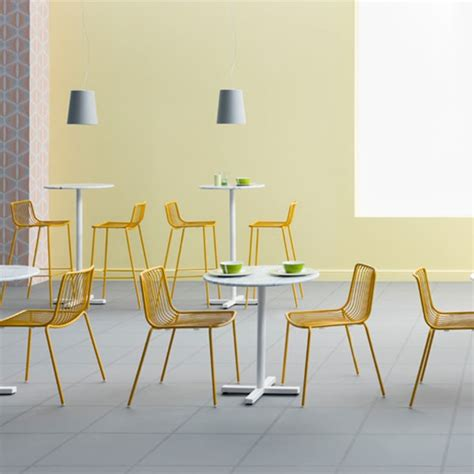 chaise pedrali set of 2 chairs nolita jardinchic