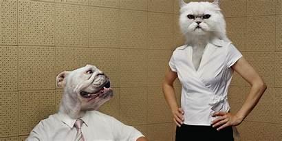 Dog Person Cat Pet Pets Dating Fun
