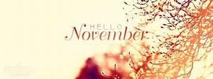 Image Gallery hello november cover