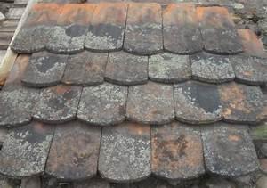 Gebrauchte Dachziegel Verkaufen : historische dachziegel biberschwanz vordach schleppdach ~ Michelbontemps.com Haus und Dekorationen