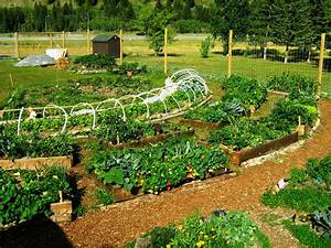 Permaculture Garden - GreenMyLife - Anyone can Garden