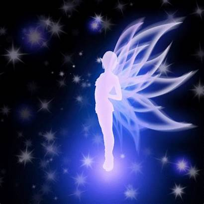 Fairy Gifs Wings Giphy Lights Heart Steemkr