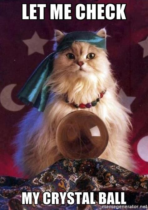 Crystal Ball Cat Let Me Check My Crystal Ball Starting