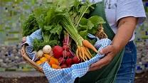 Atchison Farmers' Market - Visit Atchison