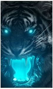 Tiger Wallpapers (65+ pictures)