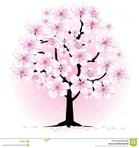 Cherry Blossom Tree Drawing At Getdrawingscom Free For