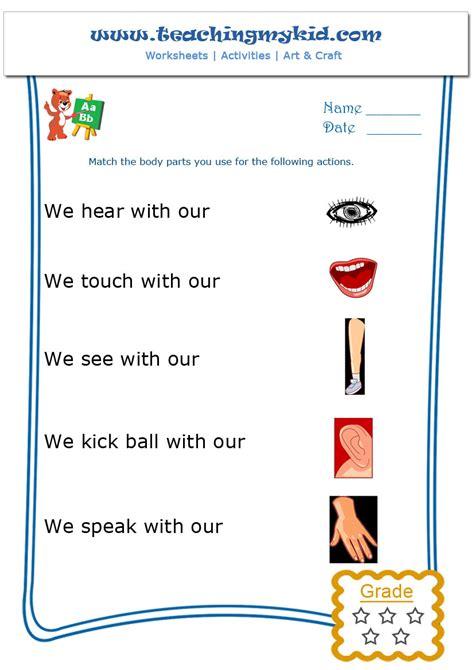 general knowledge worksheets  kindergarten  worksheet