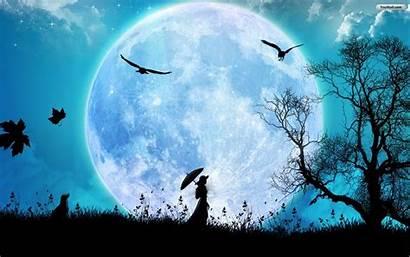 Moon Wallpapers Cool Desktop Moonlight Luna Lunar
