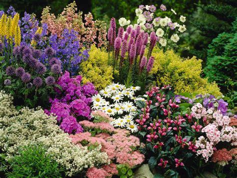 world garden plants perennial plant world of flowering plants