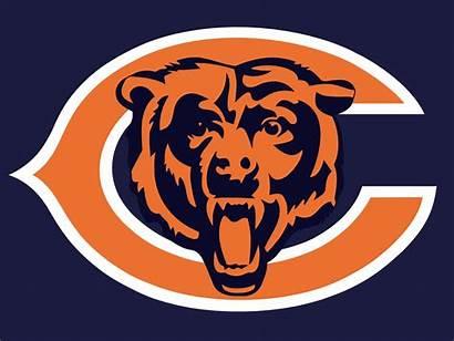Bears Chicago Sports Bear Nfl Team Need