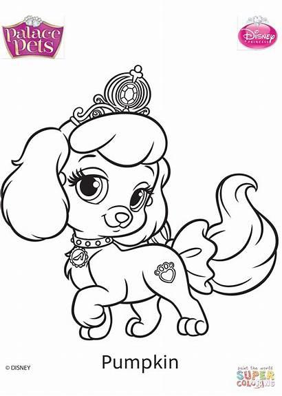 Coloring Palace Pets Pages Pumpkin Printable Paper