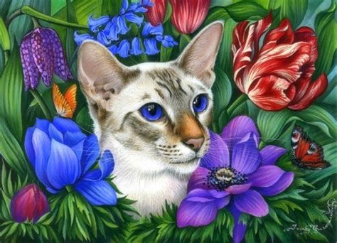 cat  flowers cats animals background wallpapers