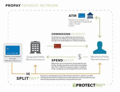 Network Payment Propay Diagram Processing Enterprise Payments
