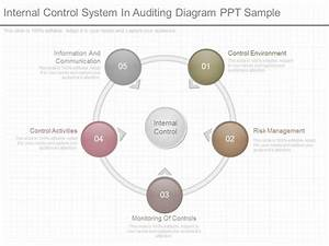 Different Internal Control System In Auditing Diagram Ppt