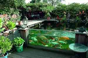 Gartenteiche Aus Kunststoff : gartenteich sichtfenster im gartenteich eingebaut gartenteich fisch becken teich und ~ Orissabook.com Haus und Dekorationen