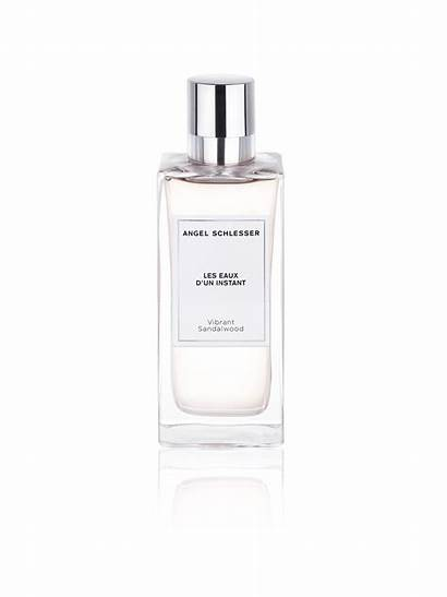 Sandalwood Schlesser Vibrant Angel Perfume Fragancia Voor