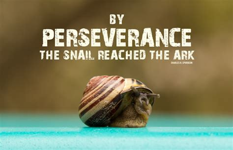 Perseverance quotes to inspire patience. Perseverance Bible Quotes On Hope. QuotesGram