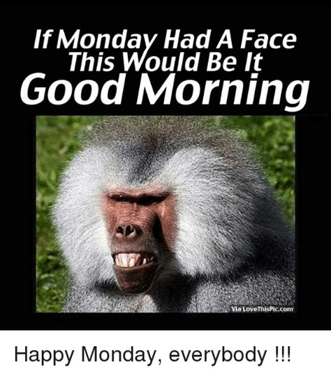 Funny Monday Morning Memes - if monday had a face this would be it good morning via love thispiccom happy monday everybody