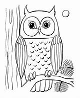 Coloring Pages Animal Owls Owl Colouring Printable Animals Easy Drawing Simple Sheets Sheet Draw sketch template