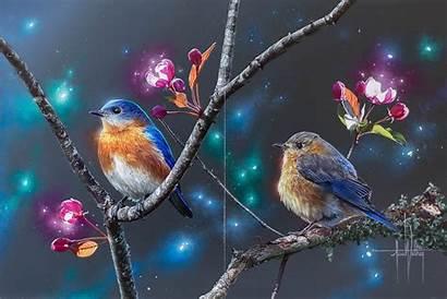 Bluebird Eastern Wallpapers Tree Female Male Bluebirds