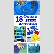 405 Best Images About Under The Sea Activities On