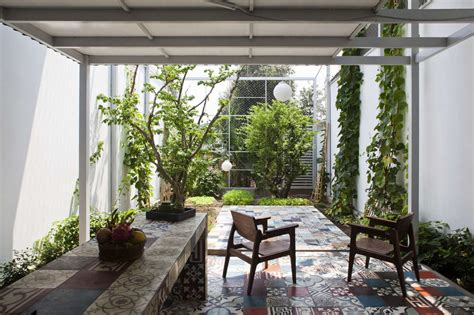 cult   courtyard  backyard ideas  small spaces gardenista