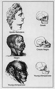 US Slave: A Fat... Social Darwinism Hitler Quotes