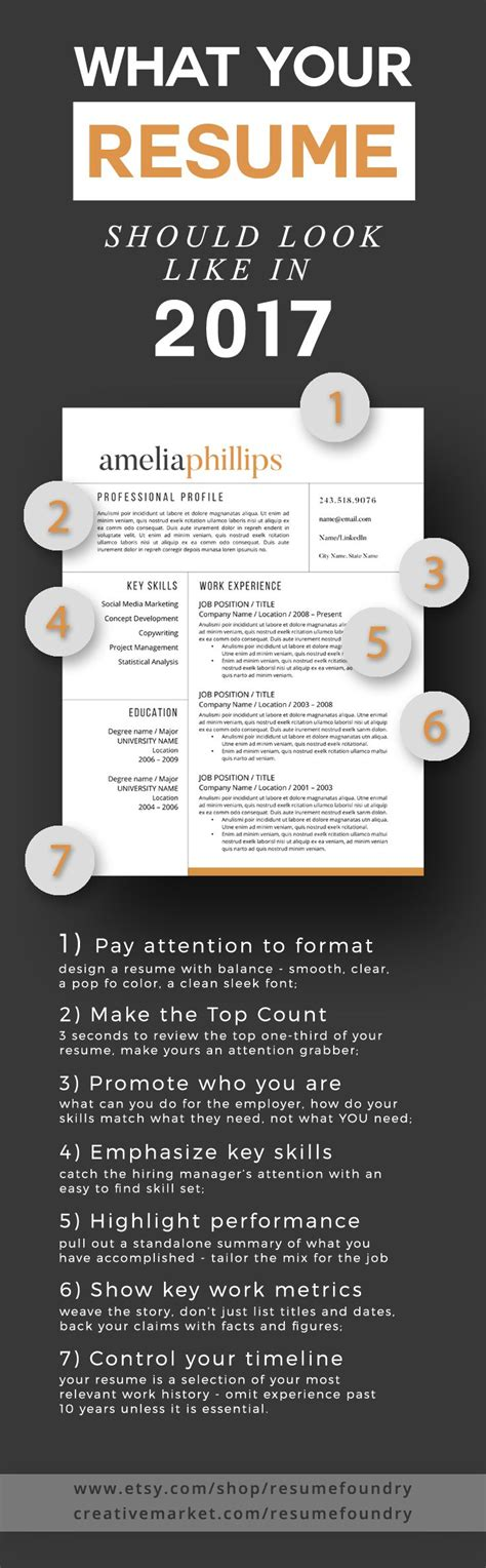 career infographic resume tips what your resume should