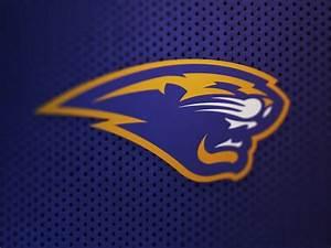 20 Stunning Sports Logo Designs