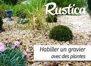 Faire Un Parterre De Galets : am nager un espace gravillon avec des plantes ~ Dailycaller-alerts.com Idées de Décoration