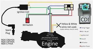 Chinese Cdi Wiring Diagram