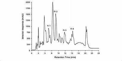 Hplc Chromatography Liquid Chromatogram Performance Extract Etoac