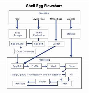 Designing A Hazard Analysis And Critical Control Point