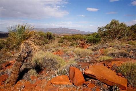 australian outback desert landscape poster  jwwallace