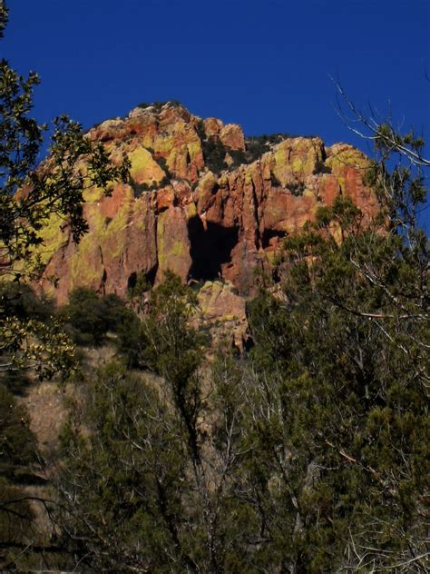 living rootless cave creek canyon arizona shining colors