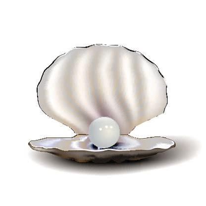 Mother of pearl clipart 20 free Cliparts   Download images ...