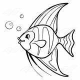 Angelfish clipart black and white - Pencil and in color ...