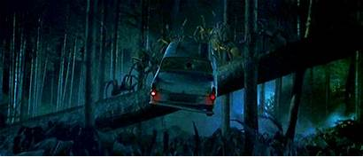 Forest Harry Forbidden Potter Anglia Spider Ford
